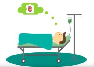 rolik donorstvo transplantazia