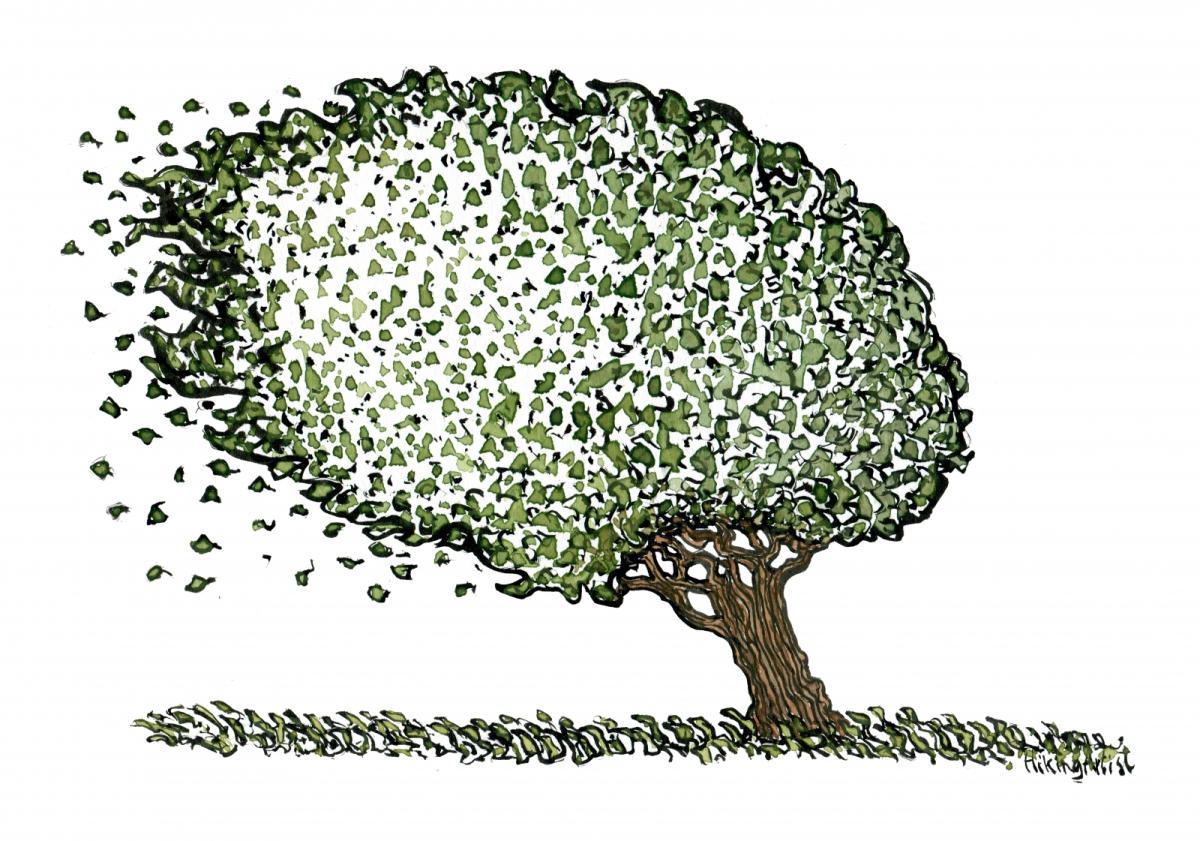 дерево на ветру иллюстрация