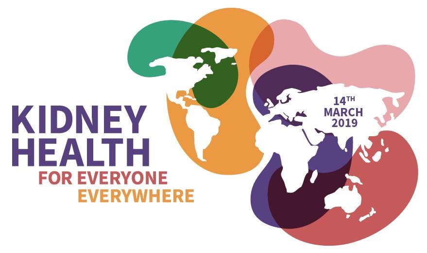 14 марта в мире отмечают день почки фото